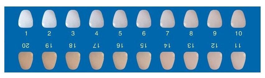 skala za određivanje nijanse boje zuba
